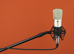 microphone windshield foams